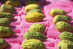sukkoth för citrusferiemarknad Fotografering för Bildbyråer