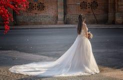 suknia tęsk zdjęcie royalty free