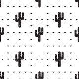 Sukulentu i kaktusa wzór Fotografia Royalty Free