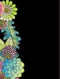 Sukulentu, różanego i liścia wektorowy czarny tło, ilustracji