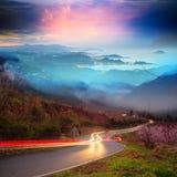 Sukura blossom in Taiwan Royalty Free Stock Image