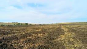 Sul campo dopo il raccolto stock footage