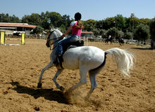 Sul cavallo Fotografia Stock