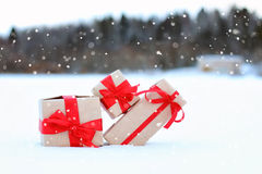 Sul fiocco di neve del paesaggio della palla del contenitore di regalo della neve Immagine Stock