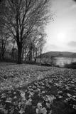 Sul fiume Fotografia Stock