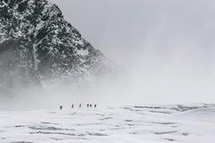 Sul ghiacciaio Fotografia Stock