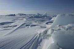 Sul ghiaccio del mare Glaciale Artico Fotografia Stock Libera da Diritti