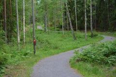 Sul greenway in Svezia Fotografie Stock Libere da Diritti
