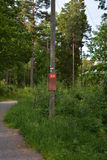 Sul greenway in Svezia Fotografia Stock