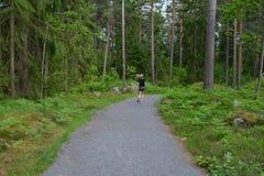 Sul greenway in Svezia Fotografie Stock
