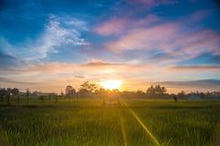 Sul mio villaggio fotografia stock libera da diritti