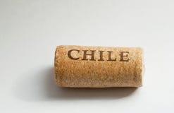 Sul - o nome do Chile americano do país na cortiça do vinho Foto de Stock