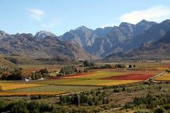 Sul - paisagem africana Fotos de Stock Royalty Free
