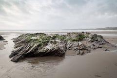 Sul percorso Cornovaglia Inghilterra Regno Unito della costa Immagine Stock
