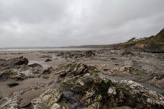 Sul percorso Cornovaglia Inghilterra Regno Unito della costa Fotografia Stock Libera da Diritti