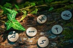 Sul tronco di un albero, coperto di edera, sono le rune scandinave di legno Il concetto di divinazione e dell'esoterismo Colori s fotografia stock