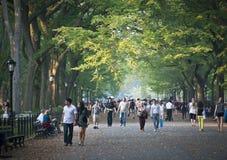 Sul viale Central Park Fotografia Stock