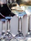 Sul - vinhos africanos Foto de Stock Royalty Free