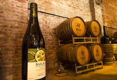 SULA vineyard. S is an Indian winery stock photography