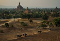 Sulamani temple from top of Pyathatgyi pagoda at sunset, bagan, Mandalay region, Myanmar. The Sulamani Temple is a Buddhist temple located in the village of stock image