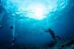 Sulawesi du sud-est, Indonésie 9 mars 2018 : Les plongeurs plongent image stock