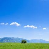 Sulcis countryside Stock Image