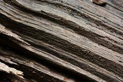 Sulcos de madeira imagens de stock