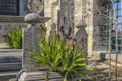 Suleymaniye有传奇土耳其语s的坟茔的清真寺公墓 库存图片