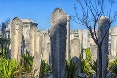 Suleymaniye有传奇土耳其语s的坟茔的清真寺公墓 免版税库存图片