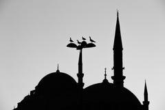 Suleymaniye清真寺剪影 免版税库存照片