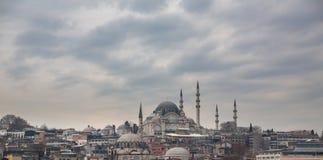 Suleymaniye Mosque and istanbul skyline, Turkey Royalty Free Stock Photos