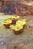 Sulfur in baskets. Volcano Ijen. royalty free stock images