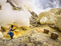 Sulfur Miner Extracting Sulfur from Inside Crater of Kawah Ijen Volcano Royalty Free Stock Image