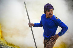 Sulfur Miner at Work, Kawah Ijen Volcano, East Java, Indonesia Stock Photography