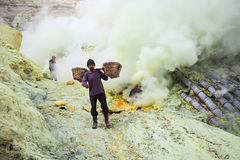 Sulfur miners Royalty Free Stock Photos