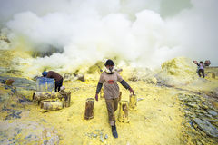 Sulfur Miners at Kawah Ijen Volcano in Java, Indonesia Stock Image