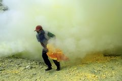 Sulfur Miners No Safety Standard. 27/05/2015, Banyuwangi, East Java, Indonesia: Sulfur miners in the Ijen crater Banyuwangi. The health condition of miners is Royalty Free Stock Photography