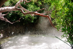 Sulfur Mud Hot springs. Sulfur hot springs in Costa Rica Royalty Free Stock Image