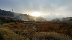 Sulfur steam banks in Volcano National Park, Hawaii Stock Photography