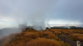 Sulfur steam banks in Volcano National Park, Hawaii Royalty Free Stock Photos
