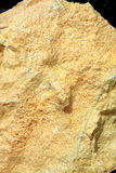Sulfur Texture Stock Image