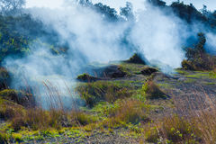 Sulfur vents fumes Stock Images