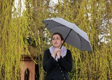 Sulkiness sous la pluie Images stock