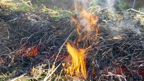Sull'estratto del fuoco immagini stock libere da diritti