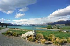 Sulla riva del lago Tekapo immagini stock libere da diritti