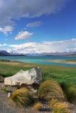 Sulla riva del lago Tekapo immagine stock libera da diritti