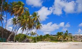 Sulla spiaggia inferiore della baia, le Barbados Immagine Stock