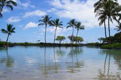 Sulla spiaggia in Kauai Immagine Stock