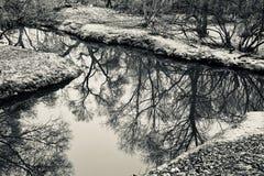 Sulla sponda del fiume in autunno fotografia stock libera da diritti