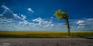 Sulla strada con le nuvole Immagini Stock